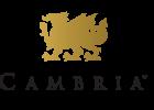 cambria_matter